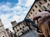 La Bottega dell Ottica_Susi Menchicchi_Scatti con il cuore (10)