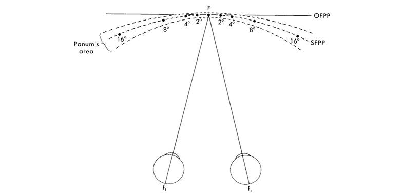 disparita-di-fissazione-e-sintomatologia-associata-in-visione-prossimale_Platform_Optic